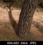 Click image for larger version  Name:  Stalker-DX11-2.jpg Views: 46 Size:  63,8 KB